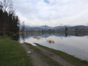 Hochwasser Januar 2018