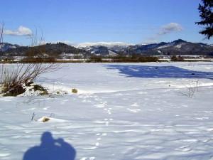 winter.36